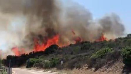 Incendio vastissimo vicino la spiaggia: paura tra i turisti