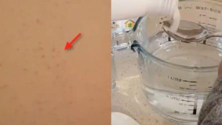 Come eliminare la muffa con un detergente fai da te