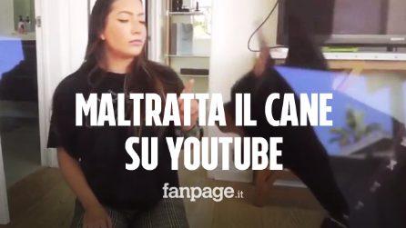 Picchia e sputa contro il cane in un video, youtuber indagata per maltrattamenti