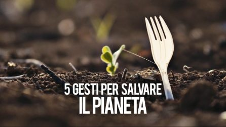 5 gesti per salvare il pianeta