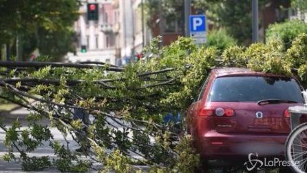 Violento nubifragio a Milano, albero sradicato finisce su un'auto