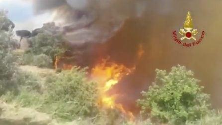 Incendio Catanzaro, colonne di fumo e fiamme devastano gli alberi