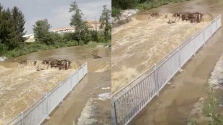 Maltempo, esonda il torrente Molgora a Gorgonzola