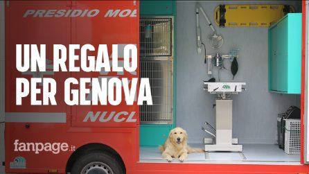 """Ponte Morandi, tassisti in aiuto ai cani dei vigili del fuoco: """"Ecco cosa abbiamo fatto per loro"""""""