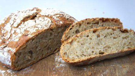 Pane senza impasto ai 5 cereali: servitelo a tavola per stupire i vostri ospiti