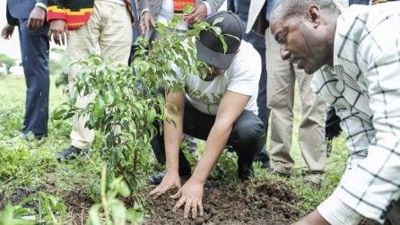 Piantano oltre 350 milioni di alberi in 12 ore. La missione dell'Etiopia contro la deforestazione
