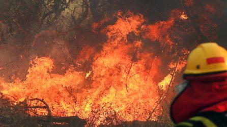 """Incendi record in Brasile: l'Amazzonia brucia e con lei il """"polmone verde"""" della nostra Terra"""