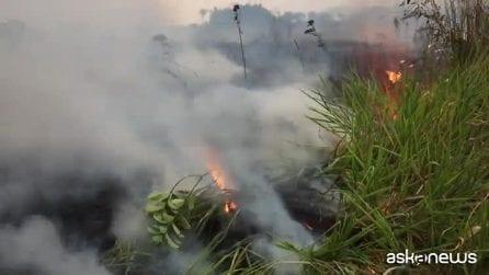 L'Amazzonia continua a bruciare, le fiamme ora anche in Bolivia