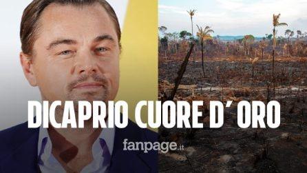 """Leonardo DiCaprio dona 5 milioni di dollari per salvare l'Amazzonia: """"Brucia e nessuno fa nulla"""""""