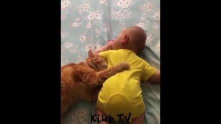 Entra in camera e trova il suo gatto sul letto mentre il figlioletto dorme