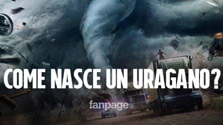 Cos'è un uragano? Tutto quello che c'è da sapere sulla perturbazione più violenta del pianeta