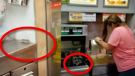 Il topolino nella cucina del ristorante: prova a scappare ma finisce nella friggitrice