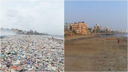 """Il """"miracolo"""" di Mumbai, era tra le spiagge più inquinate al mondo: ora sono tornate le tartarughe"""