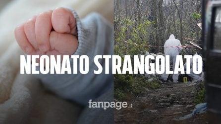 Neonato trovato morto in una scarpata con ancora il cordone ombelicale: è stato strangolato