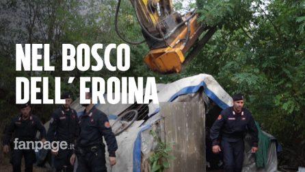 """Milano, sgomberato il boschetto dell'eroina vicino San Donato: """"Usato da spacciatori e tossici"""""""