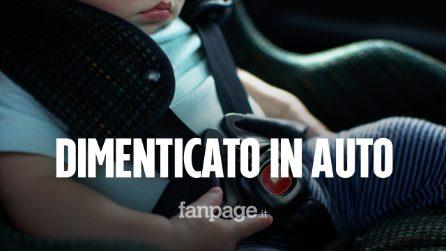 """Leonardo muore a 2 anni, dimenticato per 5 ore sotto al sole in auto dal papà: """"Cosa ti ho fatto?"""""""