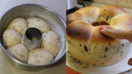 Pan brioche con gocce di cioccolato: soffice, alto e golosissimo