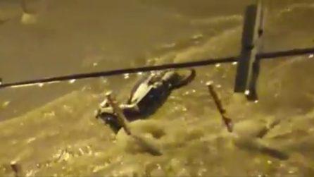 Maltempo Napoli, fiumi in strada: l'acqua trascina via tutto
