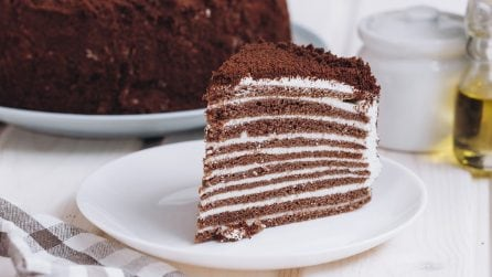 Multilayer chocolate cake: so rich and decadent