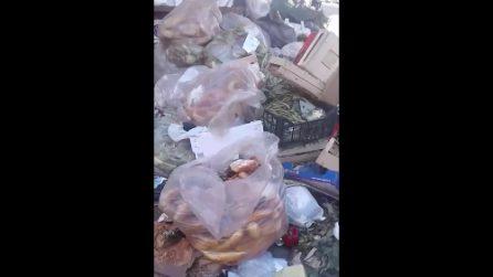 Napoli: quintali di pane, frutta e verdura gettati nell'immondizia