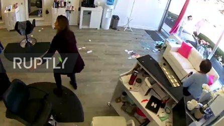 Cervo corre in strada e sfonda la vetrina del locale