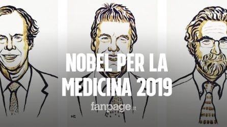 Nobel per la Medicina 2019 a Kaelin, Ratcliffe e Semenza: l'ossigeno per combattere il cancro