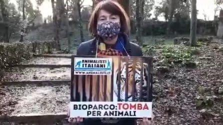 Vladimir Luxuria protesta con gli animalisti davanti al Bioparco di Roma