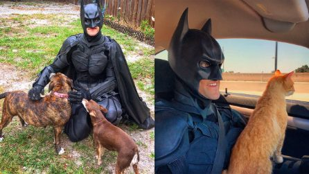 Si traveste da Batman e salva gli animali abbandonati dai canili per donare loro una famiglia
