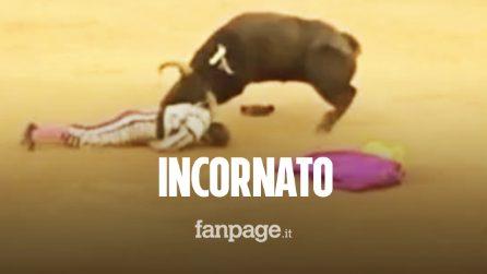 Spagna, Torero incornato durante la corrida è in fin di vita: toro gli recide due arterie