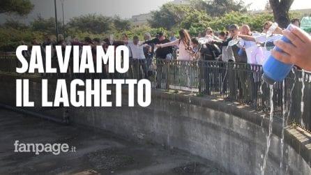 """Napoli est, cittadini si mobilitano per salvare il laghetto: """"Il Comune torni sui suoi passi"""""""