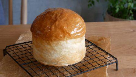 Torta brioche: il dessert più soffice e goloso di sempre