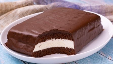 Giant delice cake: the best snack ever in a giant version that the whole family will love!
