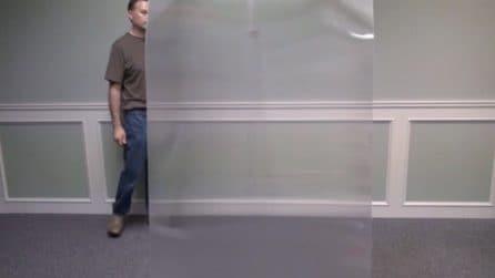 Quest'uomo diventa invisibile (e non si tratta di una illusione ottica)