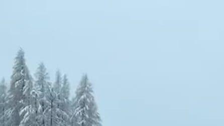 Livigno, maxi nevicata nella notte: il paese si risveglia imbiancato