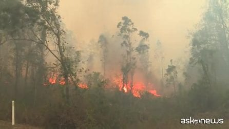 Australia, almeno tre morti e cinque dispersi per gli incendi