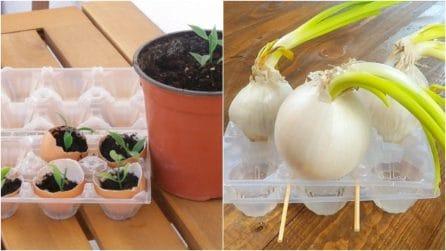 15 trucchetti geniale da provare se amate il giardinaggio!