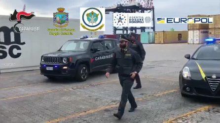 Cocaina purissima tra le banane al porto di Gioia Tauro, 1.200 chili di droga: vale 250 milioni