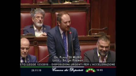 """""""Elisa, mi vuoi sposare?"""", la proposta di matrimonio in parlamento del deputato Flavio Di Muro"""