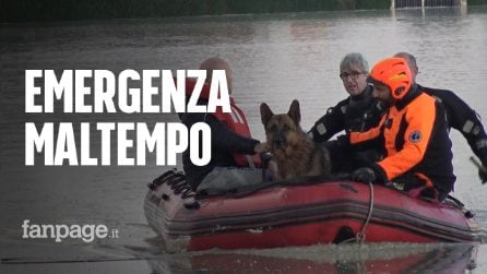 Emergenza maltempo: a Budrio 200 persone evacuate, i vigili del fuoco salvano il cane Sam