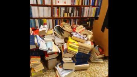 Venezia, cosa resta della Libreria Cafoscarina dopo l'acqua alta