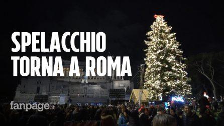 Roma, il ritorno di Spelacchio: folla a piazza Venezia per l'accensione dell'albero