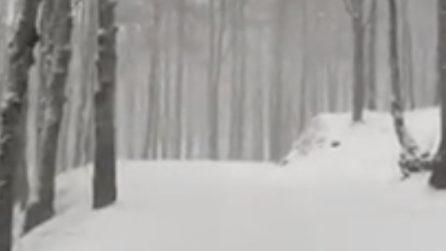 Pescasseroli imbiancata: le favolose immagini dopo la nevicata