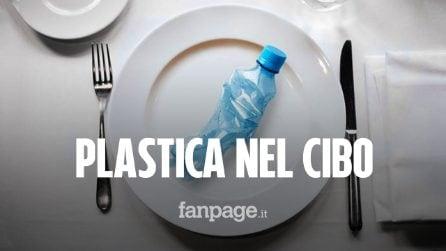 Ecco quanta plastica mangiamo ogni settimana, mese e anno (senza accorgercene)