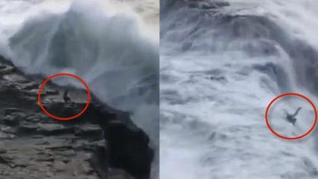 Resta fermo sugli scogli: una gigantesca onda lo trascina in acqua