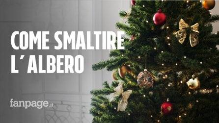 Come smaltire l'albero di Natale nel rispetto della natura