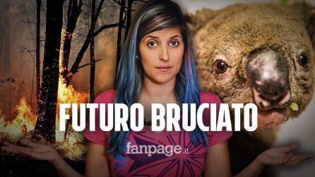 """Australia, incendi e riscaldamento globale: un legame """"pericoloso"""""""