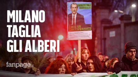 """Milano, corteo contro il taglio degli alberi al Politecnico: """"Vergogna, altro che città green"""""""