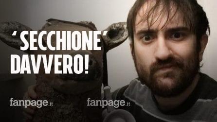 La pupa e il secchione e viceversa: chi è Lorenzo De Lauretis, il più intelligente d'Italia