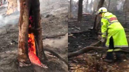 Australia, arriva la pioggia e dà una grossa mano ai vigili del fuoco