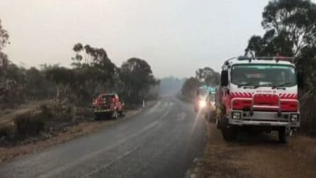 Piove in Australia, una piccola tregua dopo i devastanti incendi